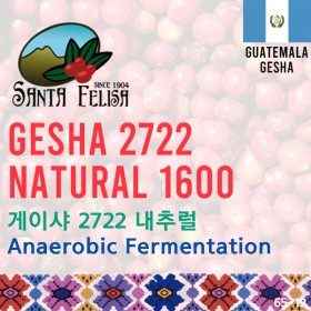 Gesha 2722 Natural 1600 Anaerobic Fermentation