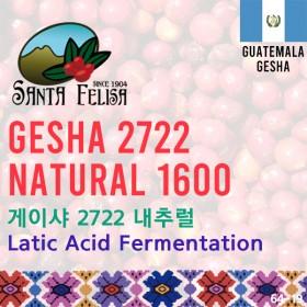 Gesha 2722 Natural 1600