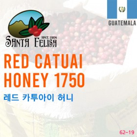 Red Catuai Honey 1750 (SOLD OUT)