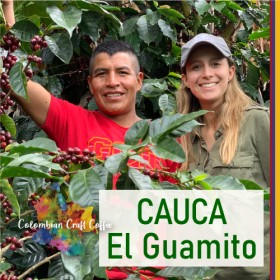 CAUCA / El Guamito_11557
