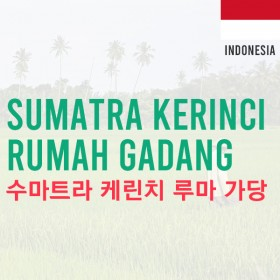 [Indonesia]Sumatra Kerinci Rumah Gadang