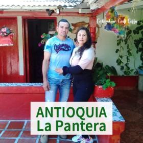 ANTIOQUIA / La Pantera