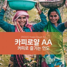 [예약구매 할인] 인도 카피로얄 AA