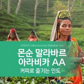 [예약구매 할인] 인도 몬순 말라바르 아라비카 AA