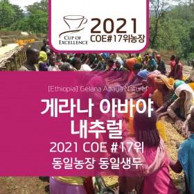 에티오피아 게라나 아바야 내추럴 셀렉티드 2021 COE #17위 농장